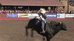 Cowboy rodeo bull ride 1 Stock Footage