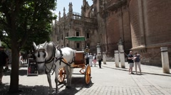 Horse and carriage Sevilla Spain P HD 9807 Stock Footage