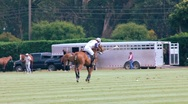 Stock Video Footage of POLO PLAYER HITS BALL
