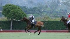 Stock Video Footage of POLO PLAYER RACES FOR BALL