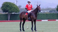 POLO PLAYER AND REFEREE Stock Footage