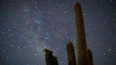 Cactus starlapse Stock Footage