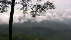 Exceptional view above the clouds over tea plantation in Sri Lanka - stock footage