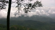 Exceptional view above the clouds over tea plantation in Sri Lanka Stock Footage