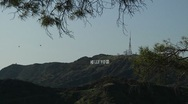 Hollywood Sign with Helicopter 0050OY Stock Footage
