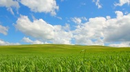 Green hill with grass under cloudy sky Stock Footage