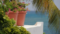 Caribbean scenic Stock Footage