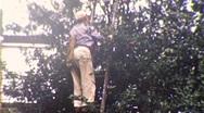 Black Man Farm Worker African American Florida 1950s Vintage Film Home Movie 192 Stock Footage