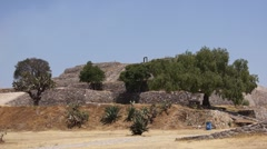 Flower pyramid in Xochitecatl Stock Footage