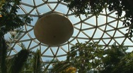 Stock Video Footage of Bloedel Conservatory Dome, Vancouver, Canada