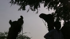 Silhouette of camels and their owner Stock Footage