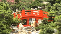 Red wooden arch bridge and little waterfall Stock Footage