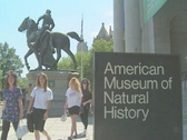 Stock Video Footage of American Museum of Natural History