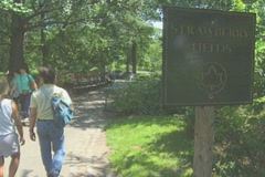 People walking into Central Park past the Strawberry Fields sign Stock Footage
