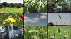 Nature Montage, 9 in 1 - HD1080 Stock Footage