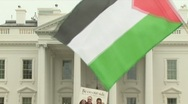 Stock Video Footage of Palestinian supporters in DC