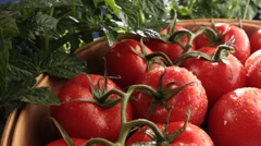 Tomatoes on the vine Stock Footage