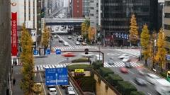 Looking along Chou-Dori, Ginza, Tokyo, Honshu, Japan - T/Lapse Stock Footage