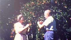 Old People Couple Rose Bush Flower Garden 1950s Vintage Film Home Movie 208 Stock Footage
