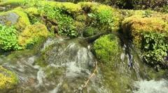 Big Spring Creek Falls 04 Stock Footage