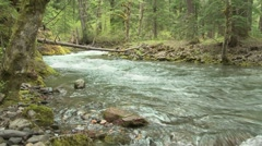 Lewis River 01 - stock footage