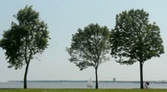 Bike riders along Lake Michigan, Milwaukee Stock Footage