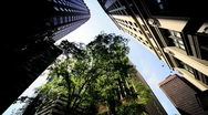High Angle Vertical approach to a Cities Resolution to Urban Living, NY,USA Stock Footage