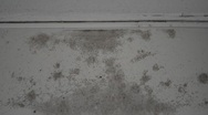 Stock Video Footage of Grey Mold on a White Wall HD