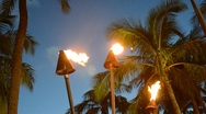 Stock Video Footage of Tiki Torches At Sunset