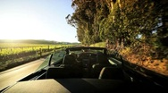 Stock Video Footage of Driving Through the Vineyards of Napa Valley