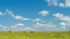 Summer meadow timelapse Stock Footage