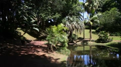 Park of Antonio Borges - stock footage
