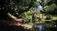 Stock Video Footage of Park of Antonio Borges