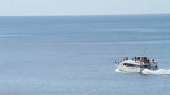 Tourist whale watching boat - stock footage