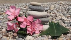 Zen stones on a beach Stock Footage