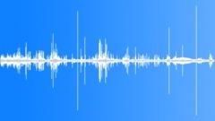 Black duck battle on pond Sound Effect