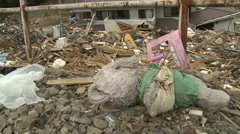 Japan Tsunami Aftermath - Child's Toy Abandoned On Ground Stock Footage