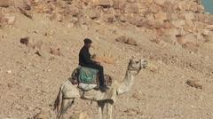 Tourist police - pyramids, bent pyramid of Dashur, Egypt Stock Footage