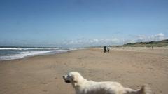 Beach Walking - stock footage
