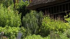 Herb garden around old farmhouse, Germany Stock Footage