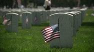 Veteran's Cemetary Stock Footage