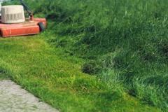 Cutting long grass. Diagonal. SD. Stock Footage