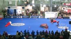 International Dog Show EURASIA-2011 Stock Footage