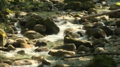 Index area creek 02 Stock Footage
