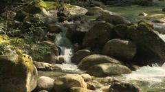 Index area creek 05 Stock Footage