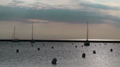 Sailboats in Chicago Harbor Stock Footage