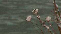 Mountan river in winter 2 Stock Footage