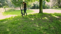 woman walking a dog - stock footage