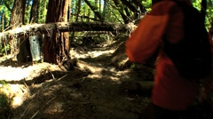 Girl Trekking Through Forest Wilderness Stock Footage