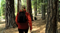 Lone Female Trekking on Park Trails - stock footage